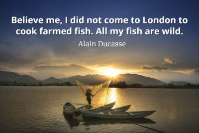Alain Ducasse Quote Believe me, I did not come to London to cook farmed fish - all my fish are wild