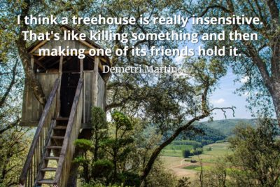Demetri Martin Quote I think a treehouse is really insensitive. That's like killing something and then making one of its friends hold it