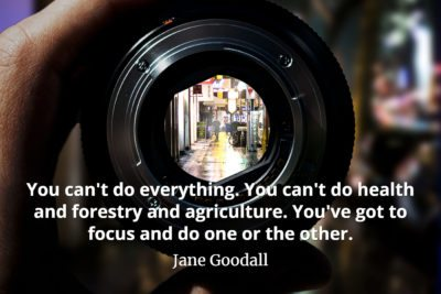 Jane Goodall Quote You can't do everything. You can't do health and forestry and agriculture. You've got to focus and do one or the other.