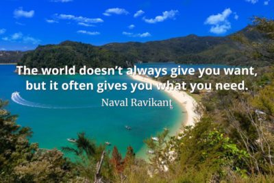 Naval-Ravikant-Quote-The-world-doesn't-always-give-you-want-but-it-often-gives-you-what-you-need