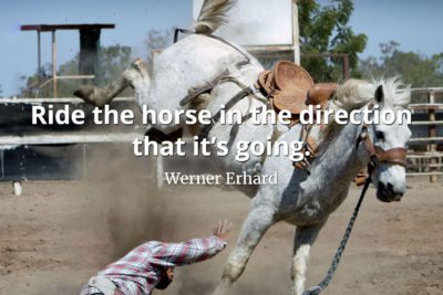 Werner Erhard Quote Ride the horse in the direction that it's going
