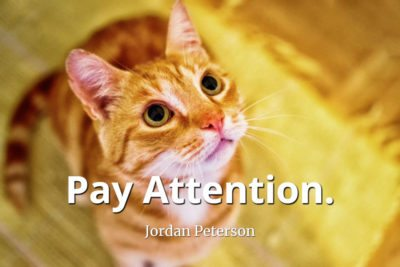 jordan-peterson-quote-Pay-attention