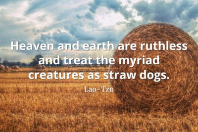 lao-tzu quote Heaven and earth are ruthless and treat the myriad creatures as straw dogs
