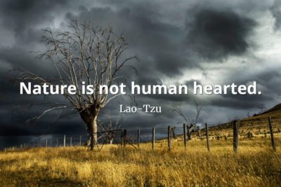 lao-tzu quote Nature is not human hearted