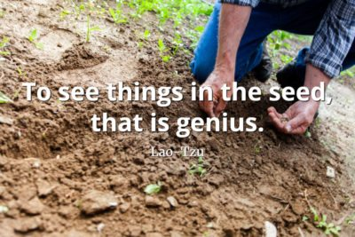 lao-tzu quote To see things in the seed, that is genius