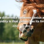 Albert Einstein quote The difference between genius and stupidity is that genius has its limits.