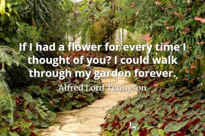 Alfred Lord Tennyson quote If I had a flower for every time I thought of you I could walk through my garden forever.