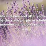 Alice Walker quote I think it pisses God off if you walk by the color purple in a field somewhere and don't notice it.