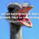 Benjamin Franklin quote We are all born ignorant, but one must work hard to remain stupid.