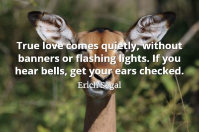 Erich Segal quote True love comes quietly, without banners or flashing lights. If you hear bells, get your ears checked.