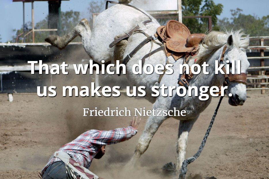 Friedrich Nietzsche quote That which does not kill us makes us stronger.
