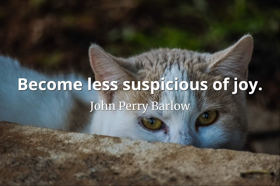 John Perry Barlow quote Become less suspicious of joy