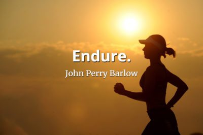 John Perry Barlow quote Endure