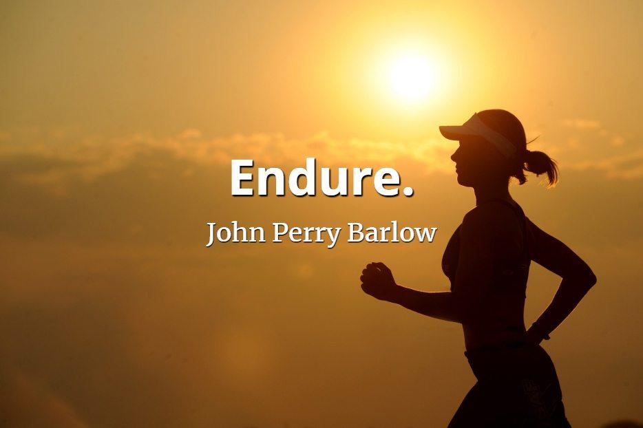 John Perry Barlow quote Endure