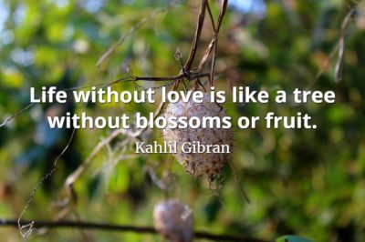 Kahlil Gibran quote Life without love is like a tree without blossoms or fruit.