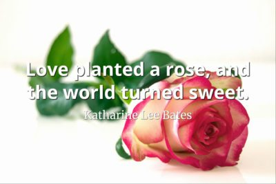 Katharine Lee Bates quote Love planted a rose, and the world turned sweet.
