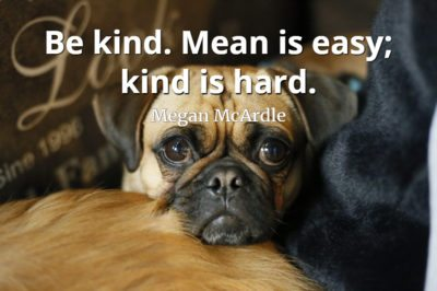 Megan McArdle quote Be kind. Mean is easy; kind is hard.
