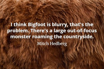Mitch Hedberg quote I think Bigfoot is blurry, that's the problem. There's a large out-of-focus monster roaming the countryside.