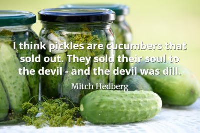 Mitch Hedberg quote I think pickles are cucumbers that sold out. They sold their soul to the devil - and the devil was dill