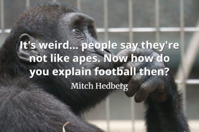 Mitch Hedberg quote It's weird... people say they're not like apes. Now how do you explain football then