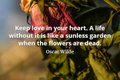Oscar Wilde quote Keep love in your heart. A life without it is like a sunless garden when the flowers are dead.