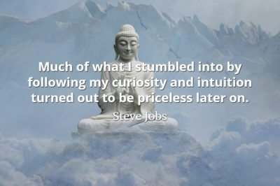Steve Jobs QUote: Much of what I stumbled into by following my curiosity and intuition turned out to be priceless later on
