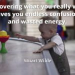Stuart Wilde quote Discovering what you really want saves you endless confusion and wasted energy
